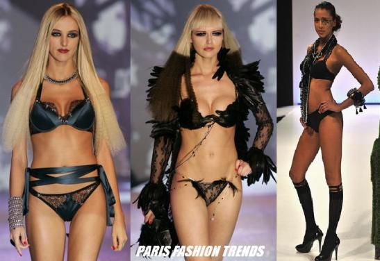 Paris Fashion Lingerie